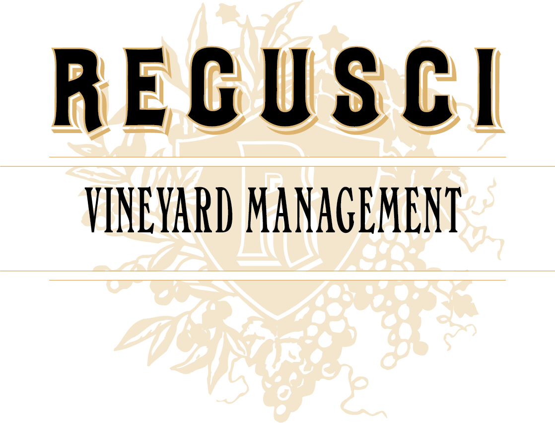 Regusci Vineyard Management Logo